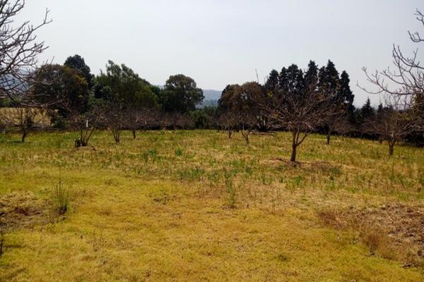 Foto de rancho en venta en camino viejo a tlacotitlan , san josé tlacotitlán, ozumba, méxico, 7195547 No. 28