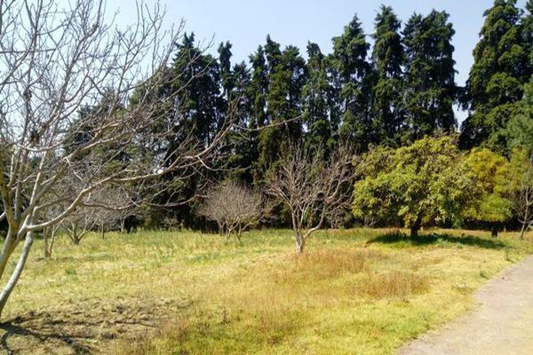 Foto de rancho en venta en camino viejo a tlacotitlan , san josé tlacotitlán, ozumba, méxico, 7195547 No. 29