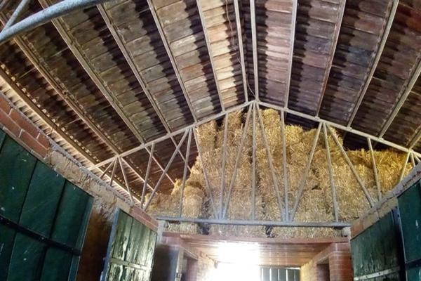 Foto de rancho en venta en camino viejo a tlacotitlan , san josé tlacotitlán, ozumba, méxico, 7195547 No. 41