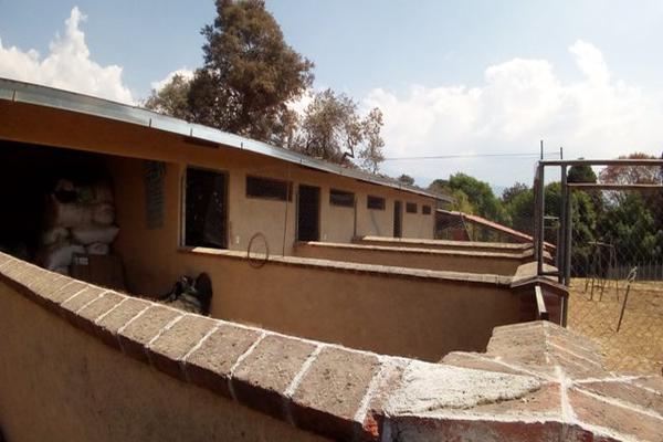Foto de rancho en venta en camino viejo a tlacotitlan , san josé tlacotitlán, ozumba, méxico, 7195547 No. 43