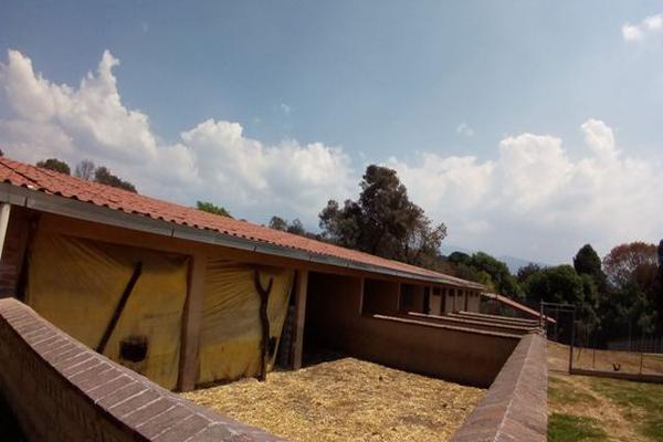 Foto de rancho en venta en camino viejo a tlacotitlan , san josé tlacotitlán, ozumba, méxico, 7195547 No. 44