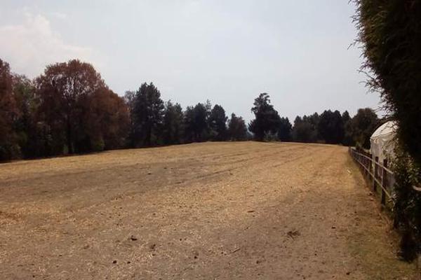 Foto de rancho en venta en camino viejo a tlacotitlan , san josé tlacotitlán, ozumba, méxico, 7195547 No. 46