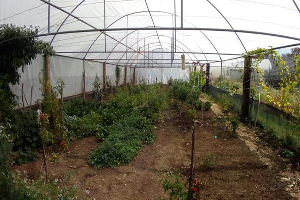 Foto de rancho en venta en camino viejo a tlacotitlan , san josé tlacotitlán, ozumba, méxico, 7195547 No. 48