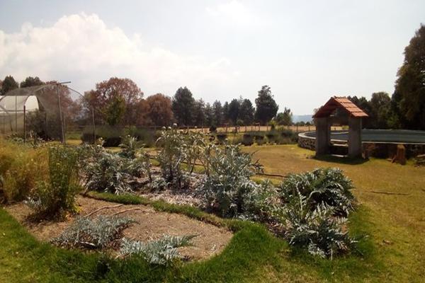 Foto de rancho en venta en camino viejo a tlacotitlan , san josé tlacotitlán, ozumba, méxico, 7195547 No. 49