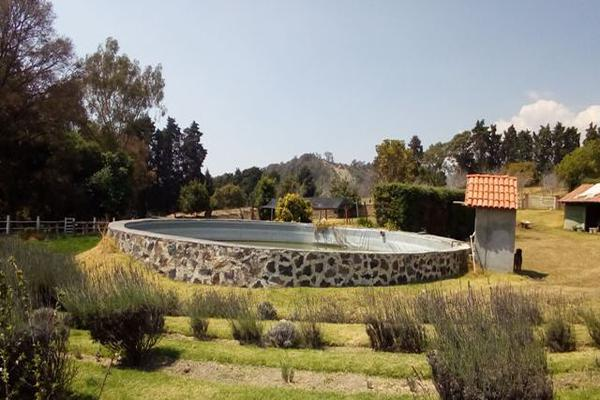Foto de rancho en venta en camino viejo a tlacotitlan , san josé tlacotitlán, ozumba, méxico, 7195547 No. 54
