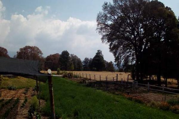 Foto de rancho en venta en camino viejo a tlacotitlan , san josé tlacotitlán, ozumba, méxico, 7195547 No. 56