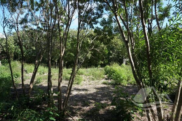 Foto de terreno habitacional en venta en  , campestre, benito juárez, quintana roo, 0 No. 03