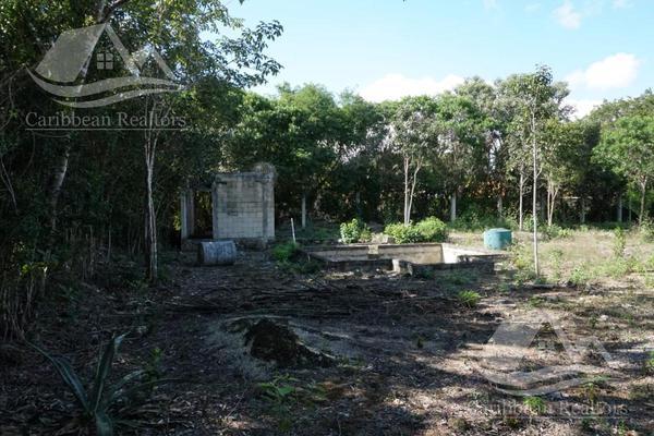 Foto de terreno habitacional en venta en  , campestre, benito juárez, quintana roo, 0 No. 05