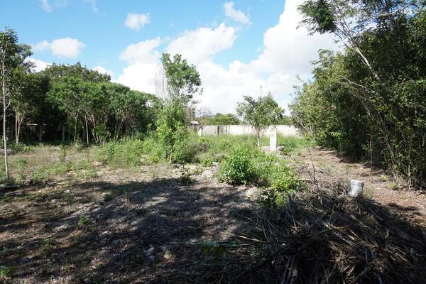 Foto de terreno habitacional en venta en  , campestre, benito juárez, quintana roo, 18644035 No. 04
