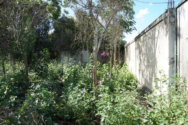 Foto de terreno habitacional en venta en  , campestre, benito juárez, quintana roo, 18644035 No. 10