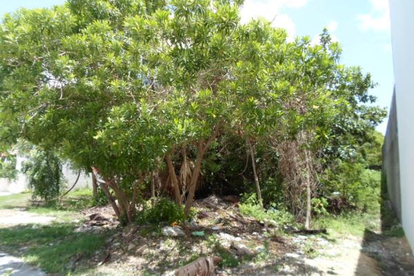 Foto de terreno habitacional en venta en  , campestre, benito juárez, quintana roo, 2634403 No. 07