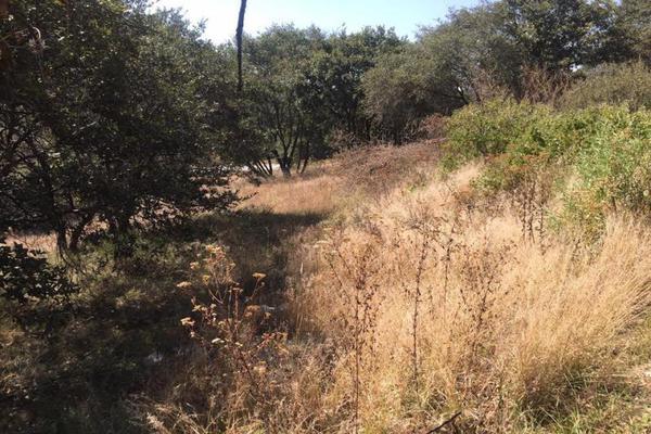 Foto de terreno habitacional en venta en  , campestre del bosque, puebla, puebla, 7479811 No. 02