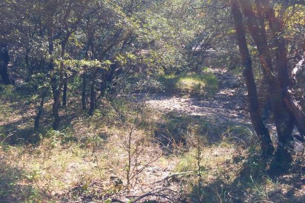 Foto de terreno habitacional en venta en  , campestre del bosque, puebla, puebla, 7479811 No. 05