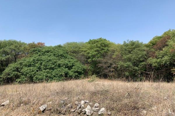 Foto de terreno habitacional en venta en  , campestre haras, amozoc, puebla, 15218393 No. 02