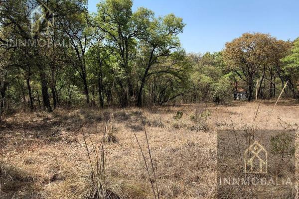 Foto de terreno habitacional en venta en  , campestre haras, amozoc, puebla, 8298458 No. 04