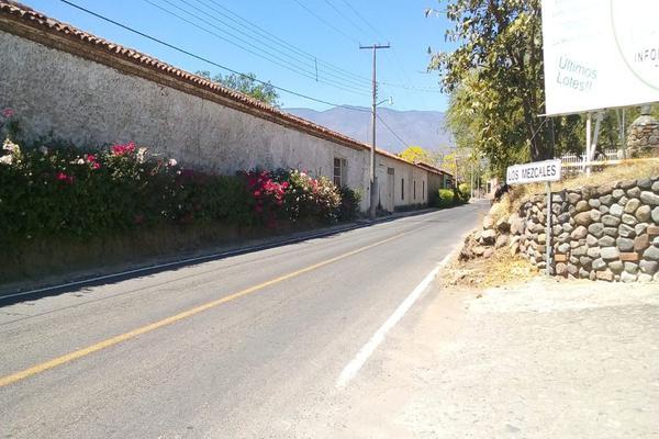 Foto de terreno habitacional en venta en campestre los mezcales , comala, comala, colima, 0 No. 03
