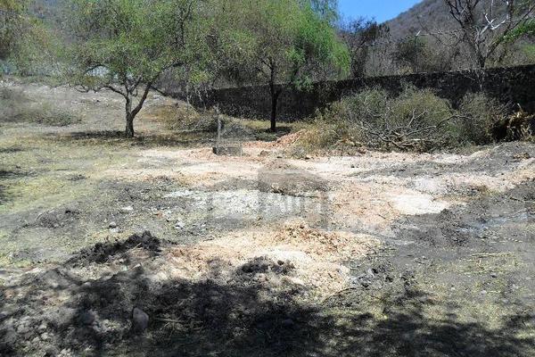 Foto de terreno habitacional en venta en campo los huajes, libramiento jojutla yautepec , el tecolote, tlaltizapán de zapata, morelos, 7539141 No. 06