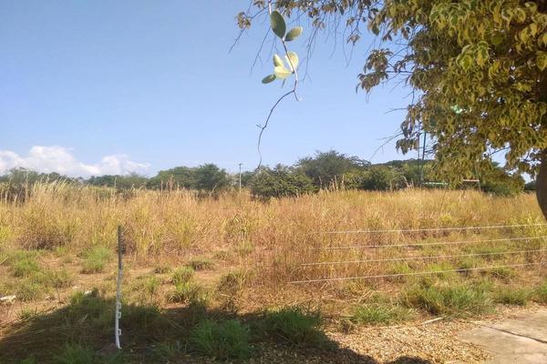 Foto de terreno habitacional en venta en  , campo verde, comala, colima, 19843174 No. 03