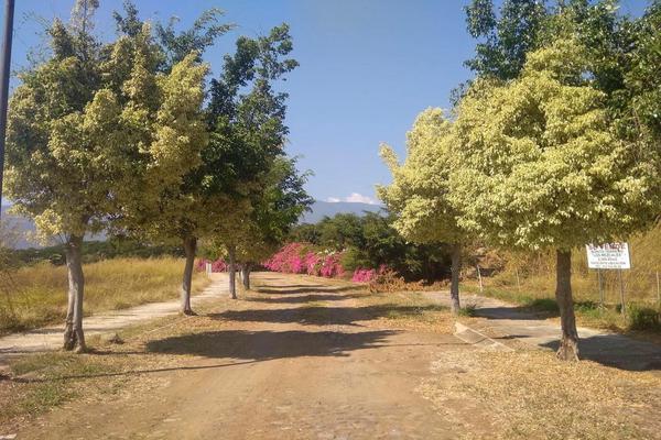 Foto de terreno habitacional en venta en  , campo verde, comala, colima, 19843174 No. 05