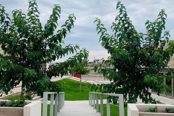 Foto de local en venta en  , campus ii uach, chihuahua, chihuahua, 12266111 No. 09