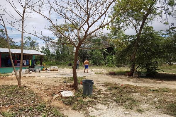 Foto de terreno comercial en venta en  , cancún centro, benito juárez, quintana roo, 3428433 No. 02