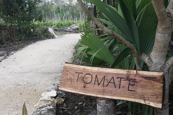 Foto de terreno habitacional en venta en  , cancún (internacional de cancún), benito juárez, quintana roo, 2626828 No. 09