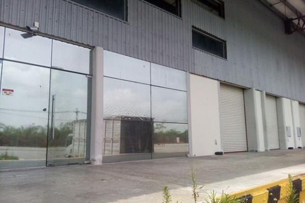 Foto de nave industrial en renta en  , cancún (internacional de cancún), benito juárez, quintana roo, 3426809 No. 03