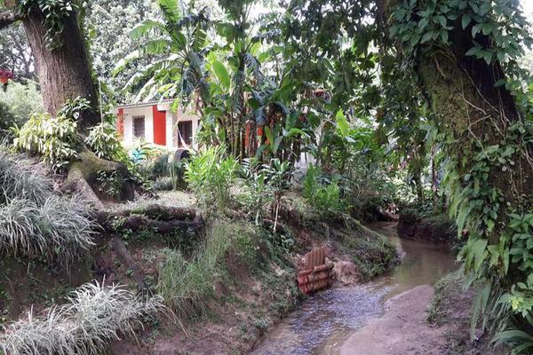 Foto de casa en venta en  , cantón san juan panamá, huixtla, chiapas, 8037228 No. 13
