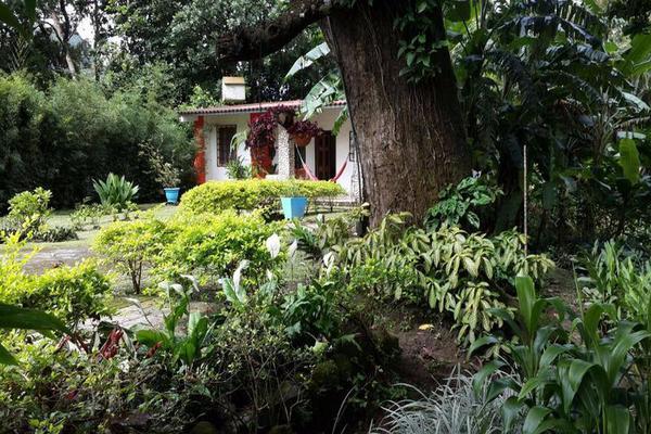 Foto de casa en venta en  , cantón san juan panamá, huixtla, chiapas, 8037228 No. 14