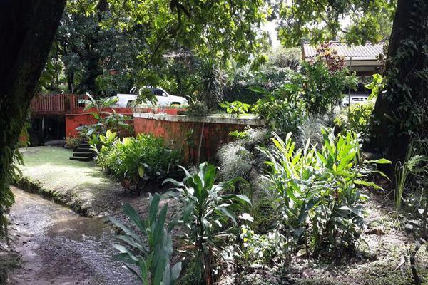 Foto de casa en venta en  , cantón san juan panamá, huixtla, chiapas, 8037228 No. 18