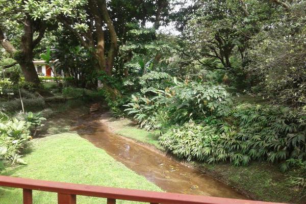 Foto de casa en venta en  , cantón san juan panamá, huixtla, chiapas, 8037228 No. 19