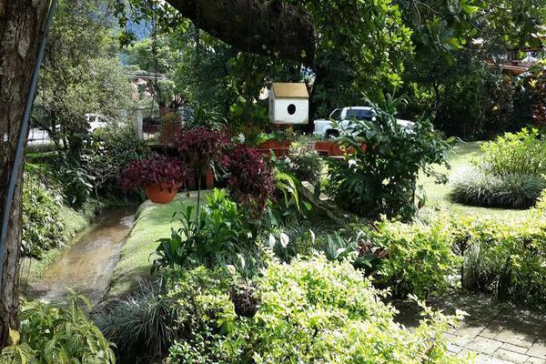 Foto de casa en venta en  , cantón san juan panamá, huixtla, chiapas, 8037228 No. 21
