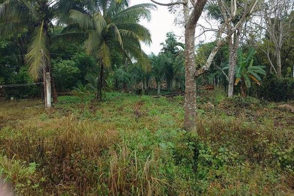 Foto de terreno habitacional en venta en  , carlos a madrazo, othón p. blanco, quintana roo, 7211487 No. 04