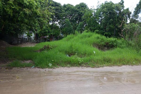 Foto de terreno habitacional en venta en carmin , alejandro briones, altamira, tamaulipas, 5775057 No. 03