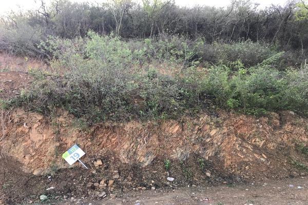 Foto de terreno habitacional en venta en  , carolco, monterrey, nuevo león, 0 No. 05