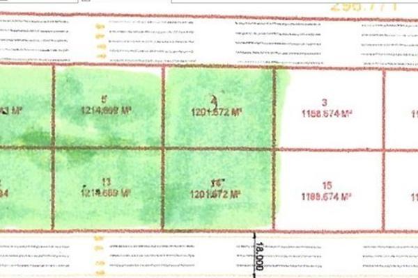 Foto de terreno habitacional en venta en carretera 111 san miguel de allende-buenavista , buenavista, san luis de la paz, guanajuato, 3156563 No. 02