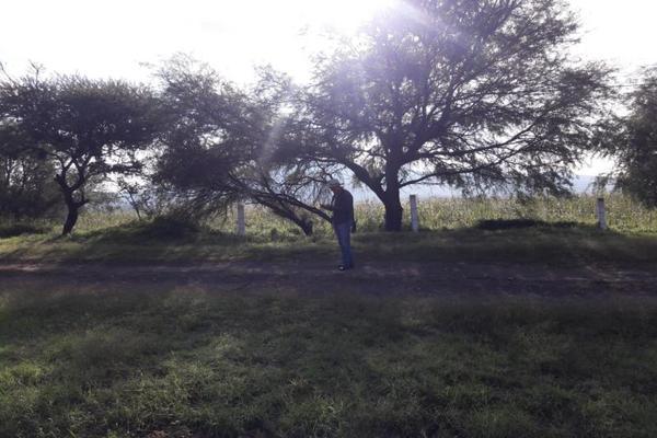 Foto de terreno comercial en venta en carretera 57 0, jofrito, querétaro, querétaro, 5914578 No. 04