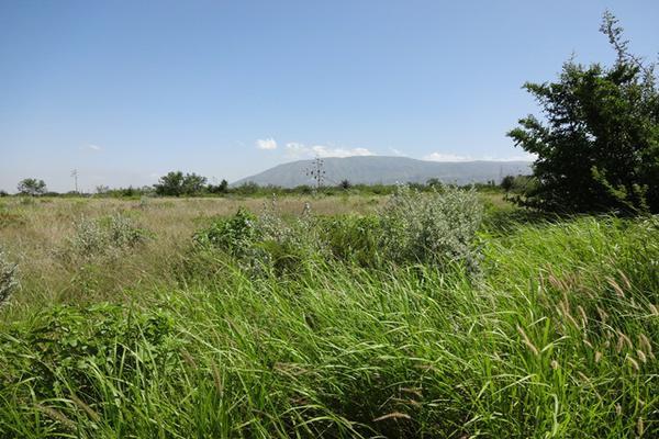 Foto de terreno habitacional en venta en carretera 57 , la gloria, castaños, coahuila de zaragoza, 3455230 No. 04