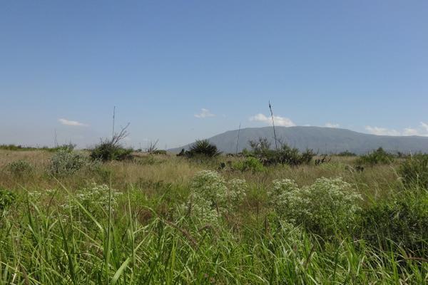 Foto de terreno habitacional en venta en carretera 57 , la gloria, castaños, coahuila de zaragoza, 3455315 No. 05