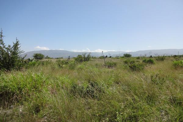 Foto de terreno habitacional en venta en carretera 57 , la gloria, castaños, coahuila de zaragoza, 3455315 No. 06