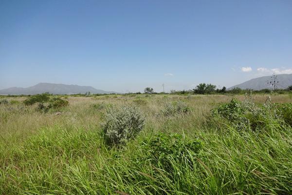 Foto de terreno habitacional en venta en carretera 57 , la gloria, castaños, coahuila de zaragoza, 3455315 No. 12