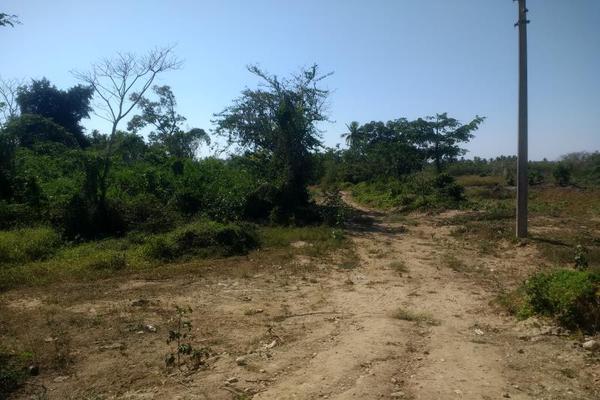 Foto de terreno comercial en venta en carretera a barra vieja , lomas de chapultepec, acapulco de juárez, guerrero, 7197360 No. 02