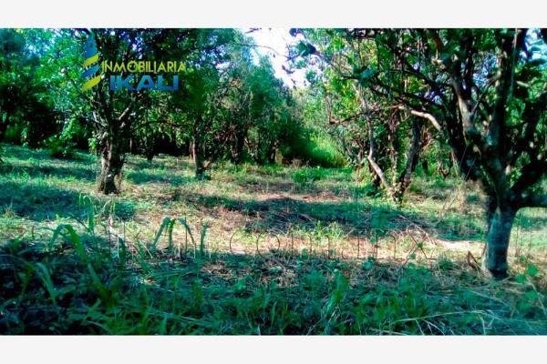 Foto de terreno habitacional en renta en carretera a cazones kilometro 48 , la florida, poza rica de hidalgo, veracruz de ignacio de la llave, 2702190 No. 02