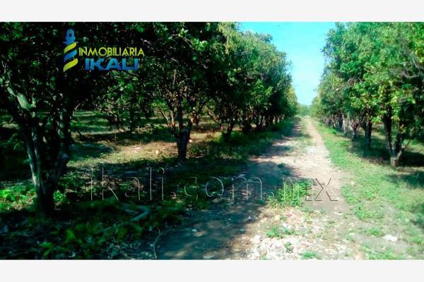 Foto de terreno habitacional en renta en carretera a cazones kilometro 48 , la florida, poza rica de hidalgo, veracruz de ignacio de la llave, 2702190 No. 07
