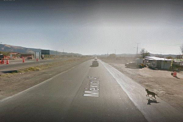 Foto de terreno comercial en venta en carretera a cd delicias , las torres, chihuahua, chihuahua, 6191569 No. 02