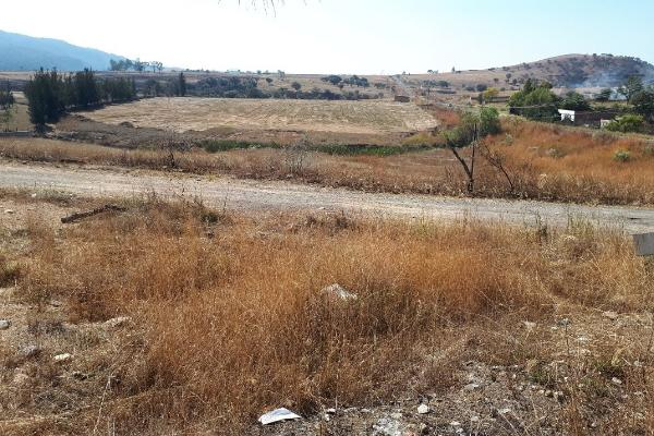 Foto de terreno habitacional en venta en carretera a colotlan kilometro 13 , colotlan centro, colotlán, jalisco, 5684896 No. 02