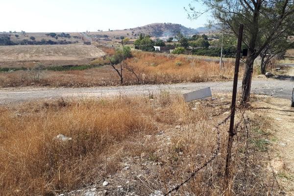 Foto de terreno habitacional en venta en carretera a colotlan kilometro 13 , colotlan centro, colotlán, jalisco, 5684896 No. 03