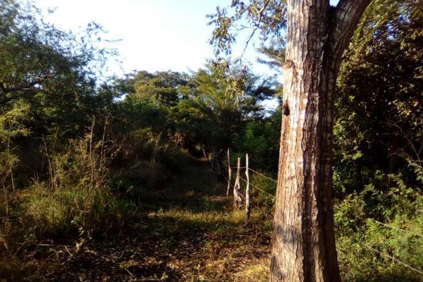 Foto de terreno habitacional en venta en carretera a cotaxtla 51, jamapa, jamapa, veracruz de ignacio de la llave, 4236900 No. 01