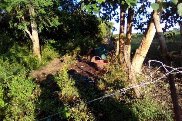Foto de terreno habitacional en venta en carretera a cotaxtla 51, jamapa, jamapa, veracruz de ignacio de la llave, 4236900 No. 02