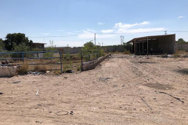 Foto de terreno comercial en venta en carretera a jabonoso , el cariño, gómez palacio, durango, 8900152 No. 04